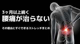 3ヶ月以上続く腰痛が治らない理由とすぐできるストレッチまとめ!つくばNピラティス